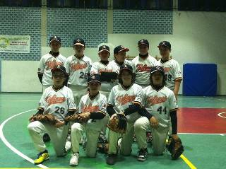 Baseball giovanile. Al giro di boa i Falcons conducono in tre categorie