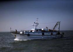 Fermo pesca, firmato il decreto ma ancora nessun indennizzo per i pescatori