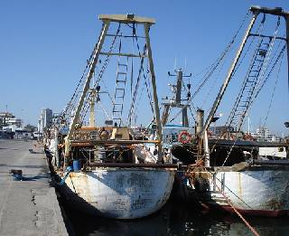 Fermo pesca, al via ma per ora solo assicurazioni verbali per i contributi