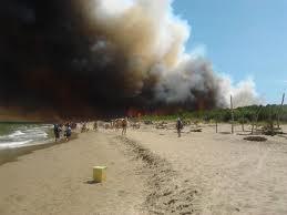 Incendio in pineta. Disagi per i treni delle linea Rimini-Ravenna