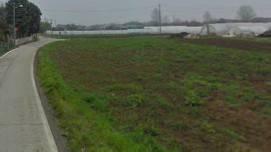 Si impantana con una prostituta in campo agricolo. Soccorso dai Carabinieri