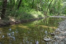 Problemi seri per acque Marano. La risposta della Regione al 5 Stelle conferma