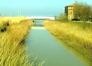 Rio Marano inquinato: comune preoccupato ma non incide su balneazione