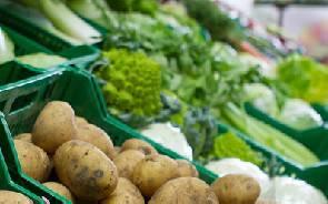 Quartetto di ladri denunciato per furto di 20 kg di ortaggi