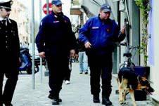 Controlli antidroga dei Carabinieri. Quattro arresti in 36 ore