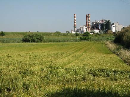 Impianto di biogas a Coriano: Il Pd contrario alla pollina