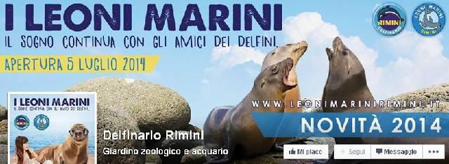 Il delfinario apre sabato come acquario coi leoni marini. 4 spettacoli al giorno