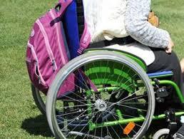 Servizi disabili. Le proposte del 5 Stelle al vicesindaco Lisi