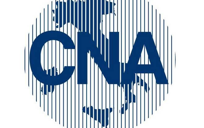 Risultato immagine per cna