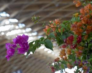 Fiera FloraTrade _RIC0898