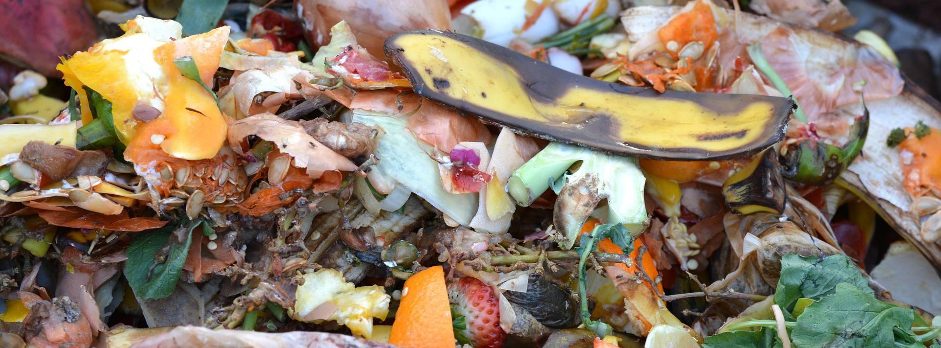 rifiuti-alimentari