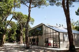 Arboreto Cicchetti, il progetto di Renata Tosi