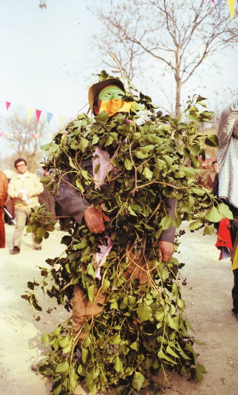 Al castello di cerreto si saluta l 39 inverno con una festa for Case ricoperte di edera