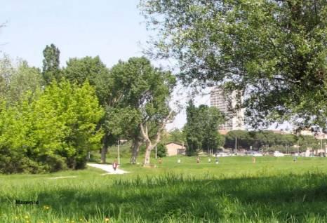 Indagine ecosistema urbano di Legambiente. Rimini scala una posizione