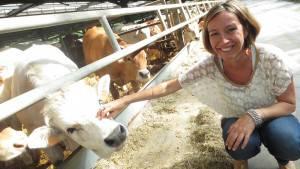 new-farmers-bovini