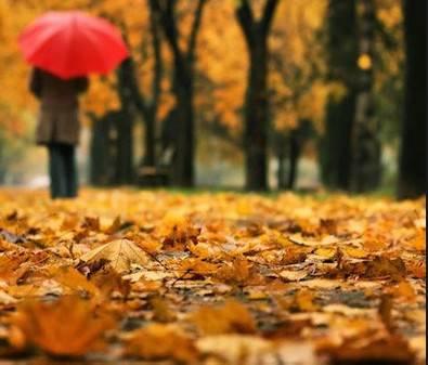 Pioggia ancora per oggi poi arriva il freddo