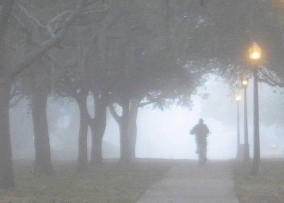 nebbia romagna