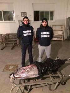 Guardia Costiera sequestrato tonno da 80 kg pescato nonostante divieto