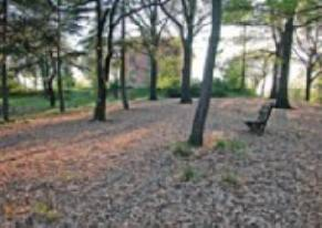 45enne di Rimini trovato senza vita in parco a Bologna