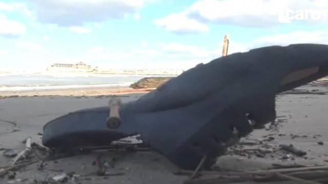 Rifiuti in mare. Rimini tra le meno inquinate ma in Adriatico è allarme plastica