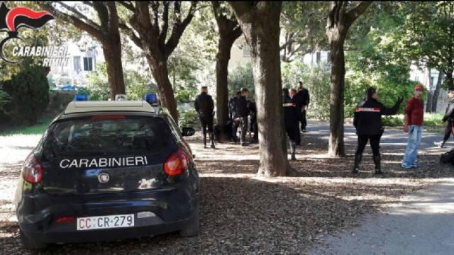 Controlli dei Carabinieri. Quattro arresti al parco Cervi