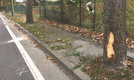 Giovedì a San Lorenzo i funerali di Simone Ugolini