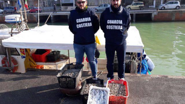 Prodotti ittici non in regola, i controlli della Guardia Costiera