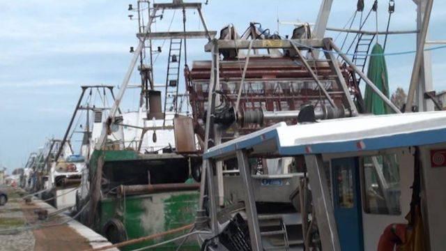Pesca, nella legge di bilancio misure di sostegno al reddito