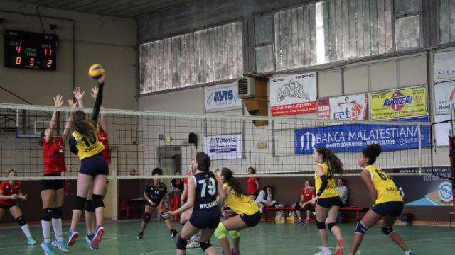 bvolley