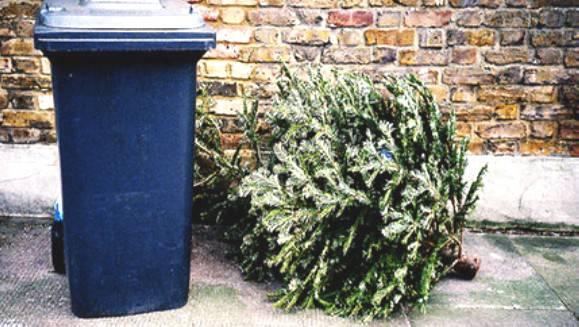 Alberi e luci di Natale: come smaltire