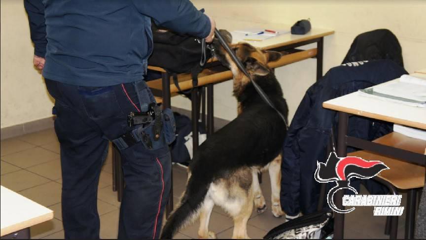 Nuovi controlli dei Carabinieri contro lo spaccio nelle scuole
