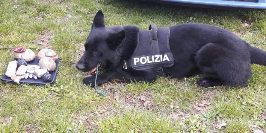 Controlli di Polizia: droga trovata tra siepi, sabbia e sellini
