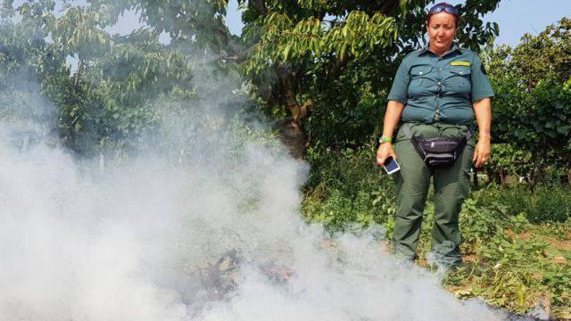 Stoppie bruciate, le Guardie Ecozoofile richiamano all'attenzione