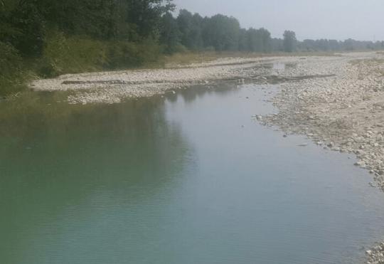 Fondazione Cetacea Onlus, WWF, Ampana e di Legambiente Valmarecchia