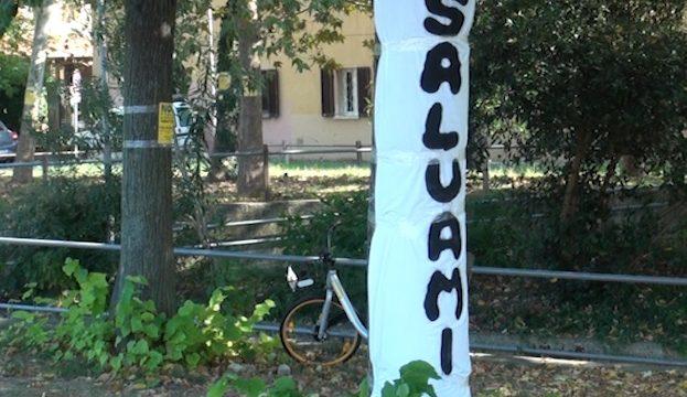 Via i cartelli dagli alberi. Rimini Verde: non ci fermeremo
