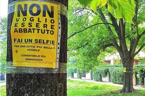 A quota 4.000 firme la campagna a difesa degli alberi