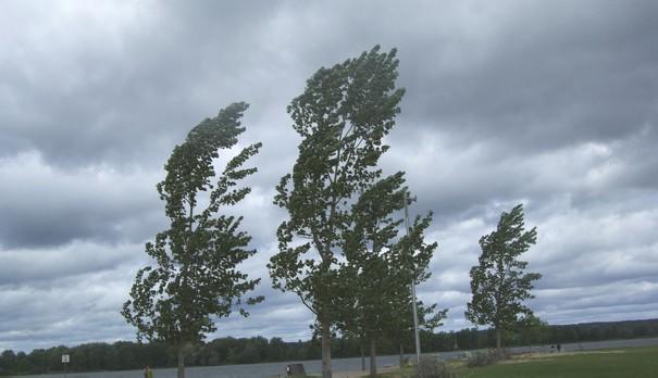 Domenica con vento e pioggia debole, poi un peggioramento