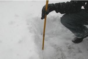 Cercasi volontari per misurare la neve