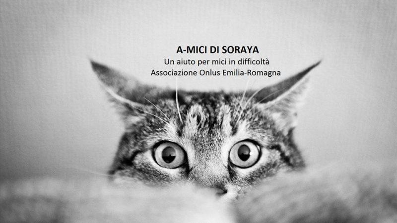 A-mici di Soraya