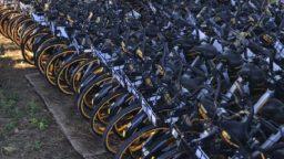 A Misano appare la distesa delle o-bike