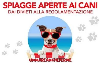 Cani in spiaggia, ecco la proposta di legge regionale