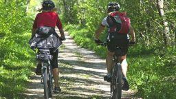 Bike tour a pagamento. Confguide: solo con figure ufficiali