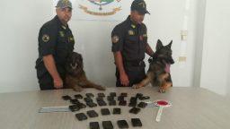 I cani fiutano la droga, arrestati due corrieri