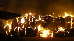 Incendio devasta azienda agricola a Rimini nord