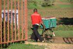 casa del pane - trasporto pane in bicicletta